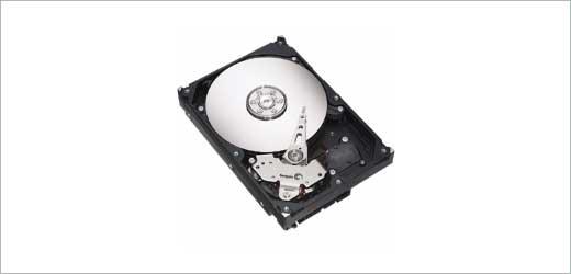 250GB  Seagate Barracuda hard drive