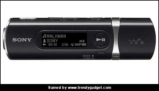 Sony Walkman B100