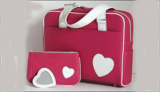Laptop Colors Laptop Bag in Pink Color