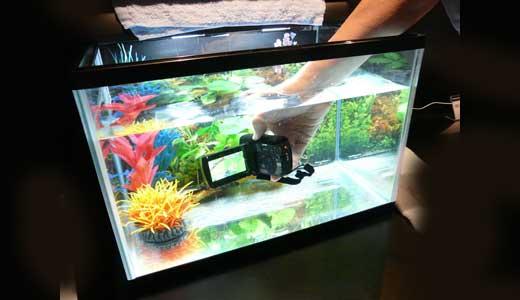 underwater HD cameras