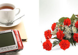 Are You looking for refurbished handycam for her in this valentine's day? This camcorder's body measures only 4 inches tall and almost 3 inches wide – making it fit perfectly in the palm of her hand. Its metallic red design and weighing in at only 10 ounces – making it […]